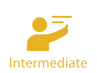 IDA ICE Intermediate - Online Training